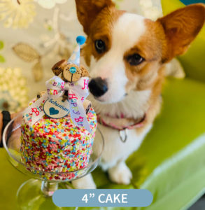 4 inch dog birthday cake