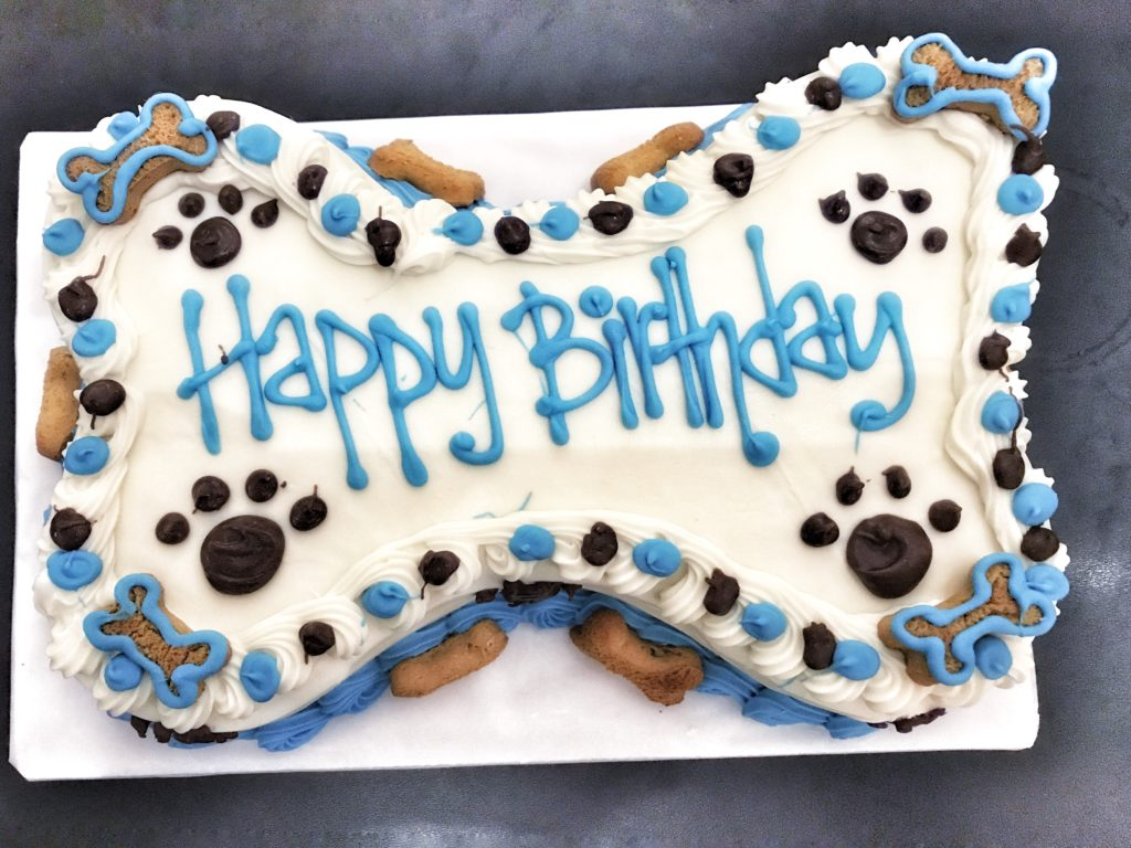 Bakery - Houston's Premier Dog Daycare FacilityHouston's Premier Dog ...